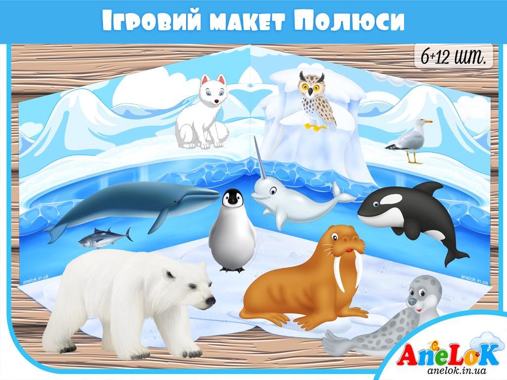 тварини полюсів